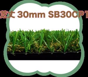 芝丈30mm SB30CP1