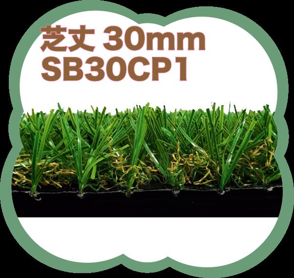 芝丈30mmSB30CP1